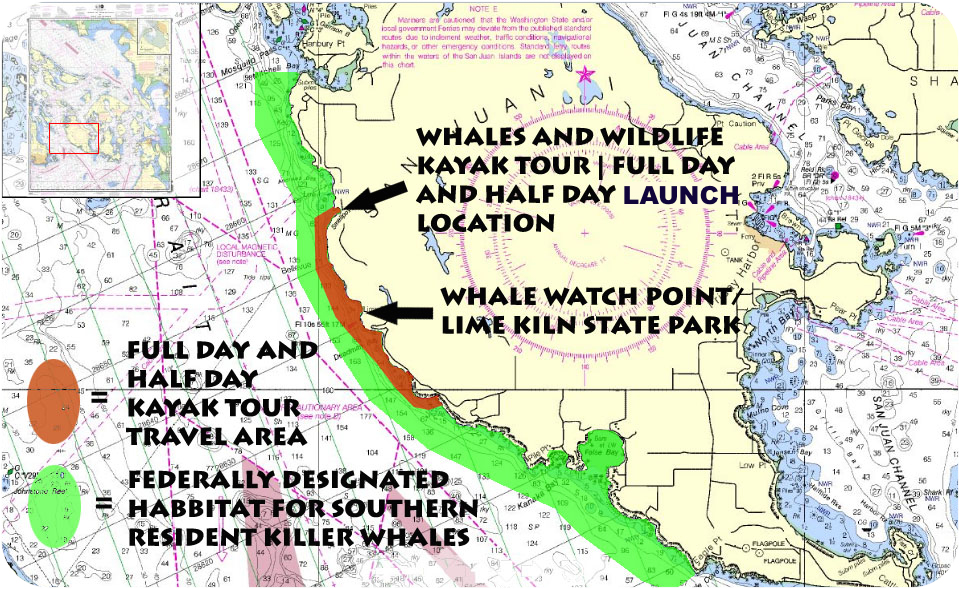 Routes for whale watching