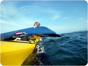 kayak guide training