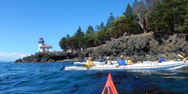 Group of kayakers on San Juan west coast