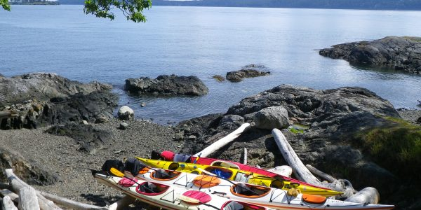 Kayaks on driftwood on Jones Island