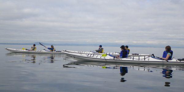 Kayak the calm seas of San Juan Island