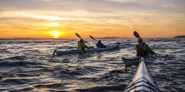 San Juan Island Sunset Kayak Tours