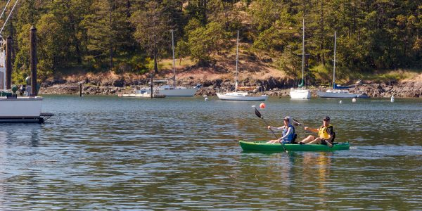 Friday Harbor Kayak Rentals