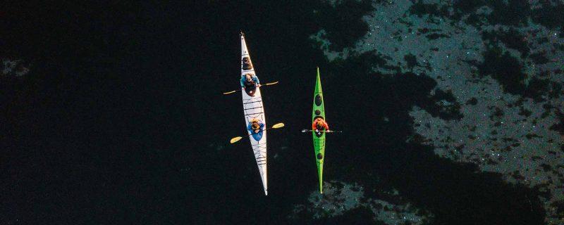 Birds eye view of single and tandem kayak along San Juan Island